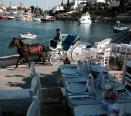 orloff-restaurant-events-11